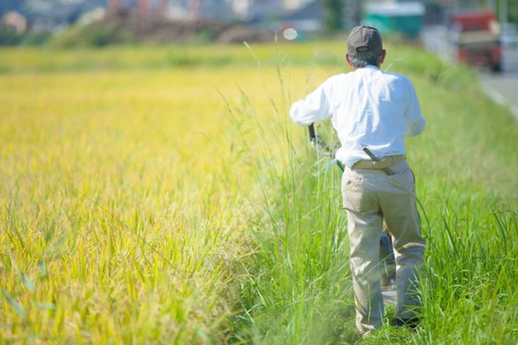 農家イメージ01